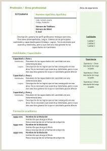Modelos De Curriculum Vitae Para Rellenar Modelo De Curriculum Vitae Nuevo Modelo De Curriculum Vitae