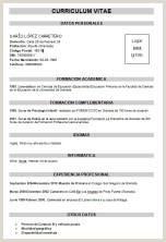 Modelos De Curriculum Vitae Para Rellenar Sencillo Modelo Curriculum Vitae Basico Para Rellenar Ftithcm