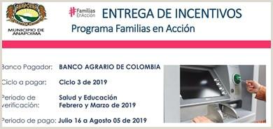Modelos De Hoja De Vida 2019 Colombia Administrador Sala De Prensa