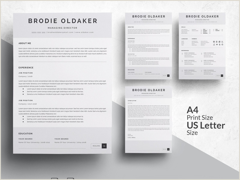 Modern Cv format Doc Free 3 Pages Professional Resume Template by Resume Templates On