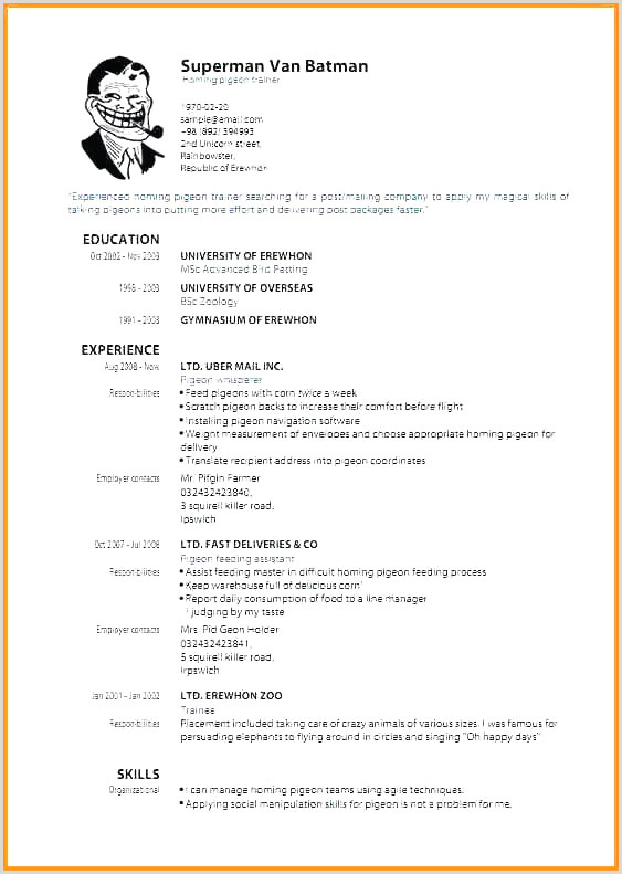 Modele Cv Moderne Gratuit Nouveau format for German Resume