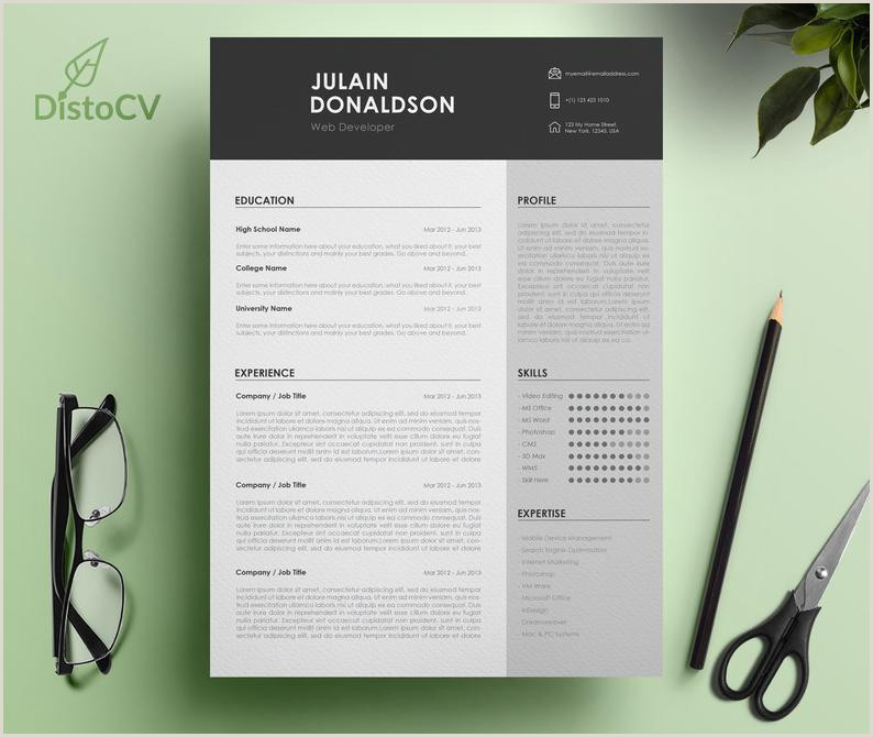 Modern Resume Template For Word Simple Resume Design Professional CV Template Resume CV Template Curriculum Vitae Web Developer Resume