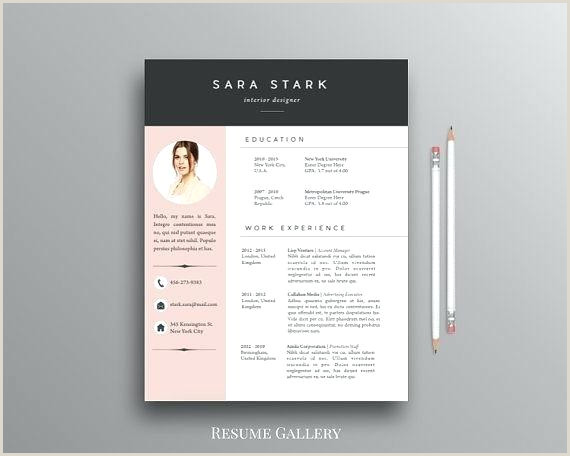 Modern Resume Template Word Free Download Templates Design