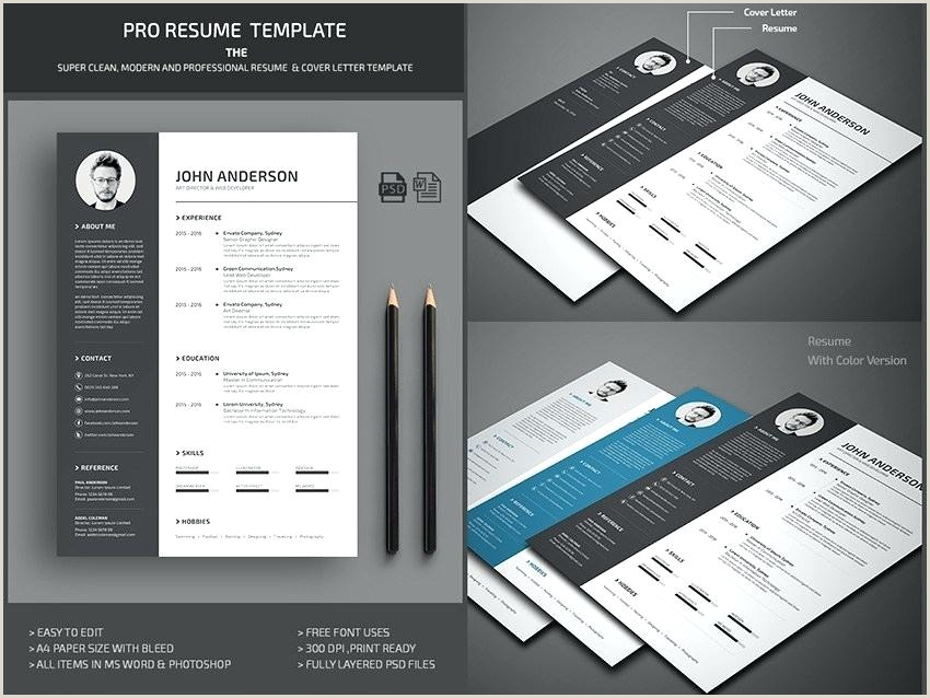 Professional Modern Word Resume Template Smart Cv Template