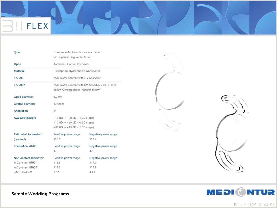 Symbole Pour Cv De Base Cv Consultant Informatique Email