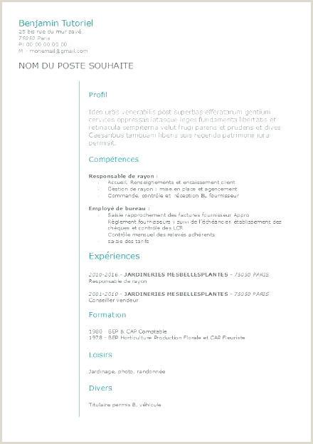 Modern Cv format Kenya Cv Gestion Administration Professionnel Sample Cv format