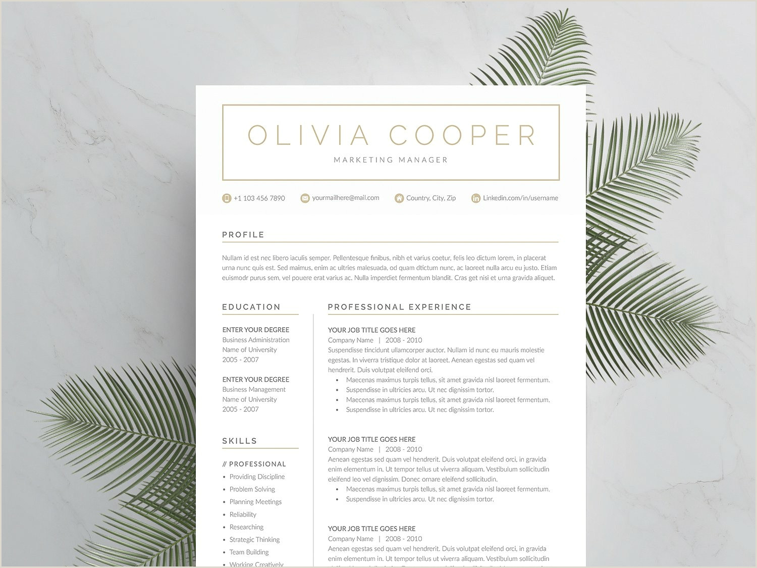 Modern Cv format Samples Word Resume & Cover Letter Template by Resume Templates On