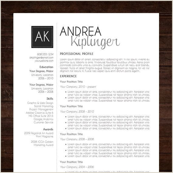 Resume Template CV Template Word for Mac or PC