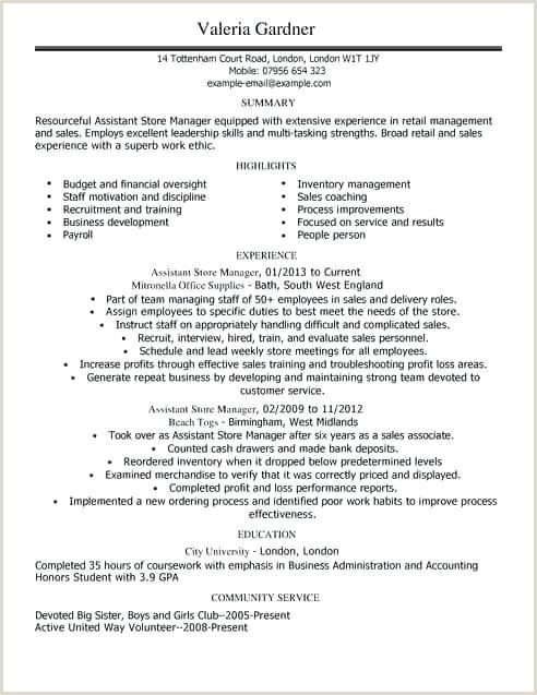 Modern Cv Sample Doc Cv Template Pdf