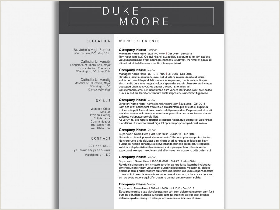 Free Modern Resume Templates for Word Sample Free Modern