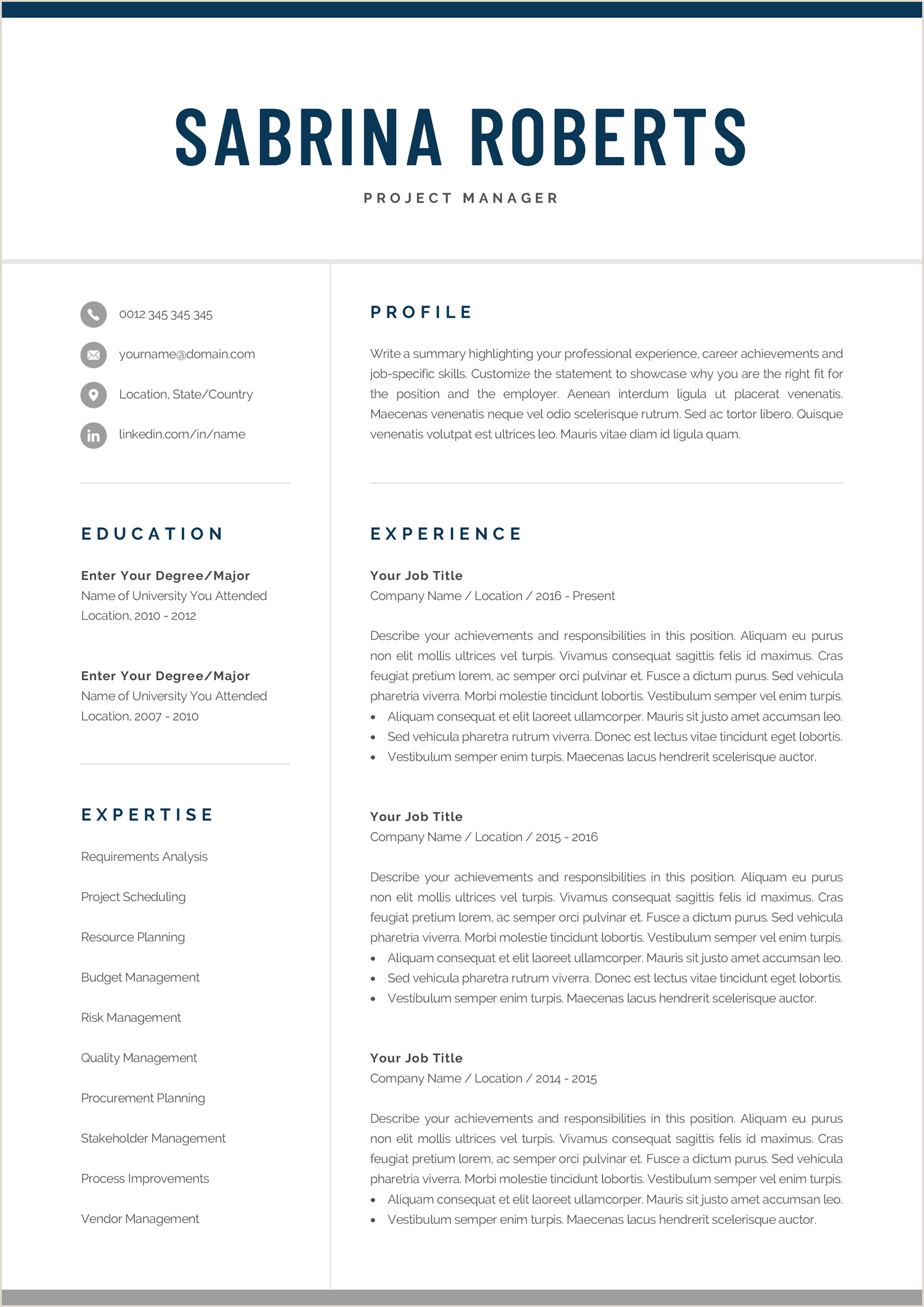 Modern Cv Sample Word Resume Template Professional Resume Cv Template