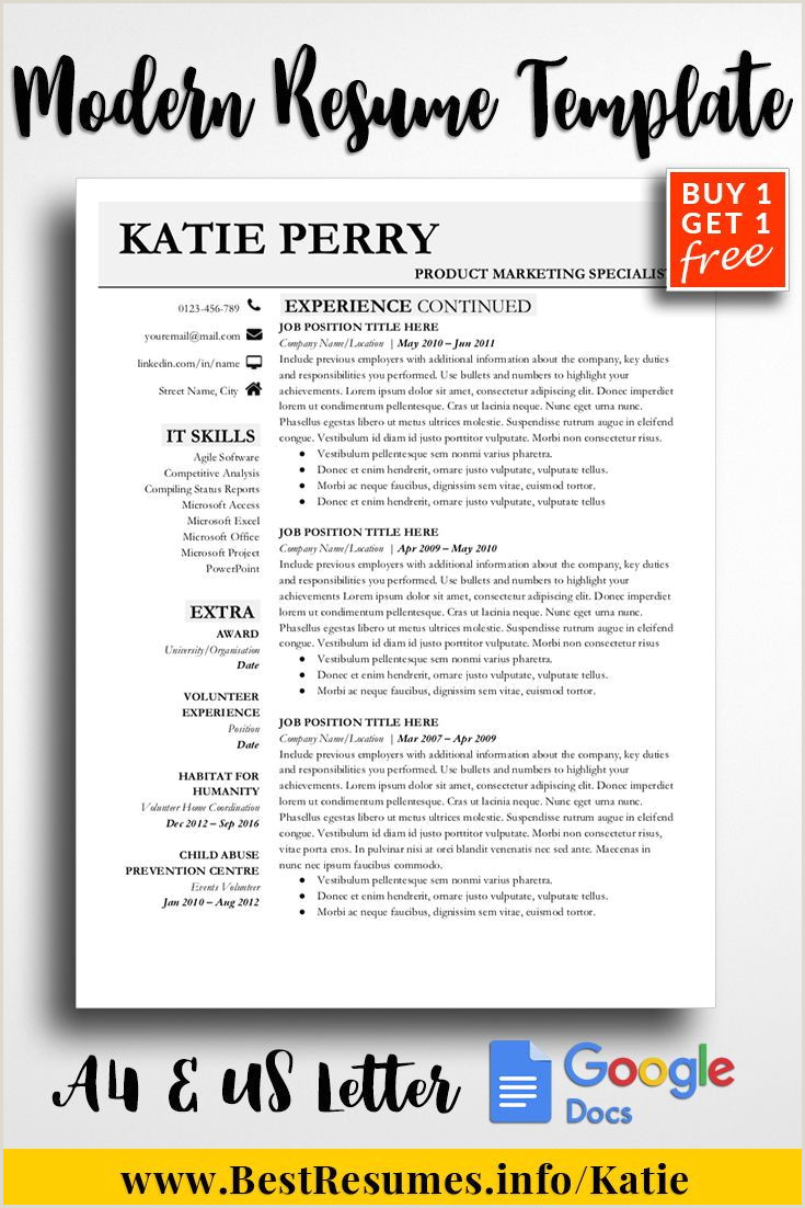 Professional Resume Template Katie Perry