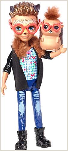 """Enchantimals Mini poupée Hixby Hérisson et Figurine Animale Pointer aux cheveux courts avec veste  col """"fourrure"""" jouet enfant FJJ22"""
