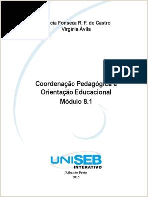 Montar Curriculo Simples Livro Proprietário Coordena§£o Pedag³gica