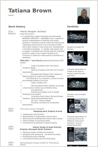 Motion Graphic Designer Resume Sample Interior Designer Architect Resume Example
