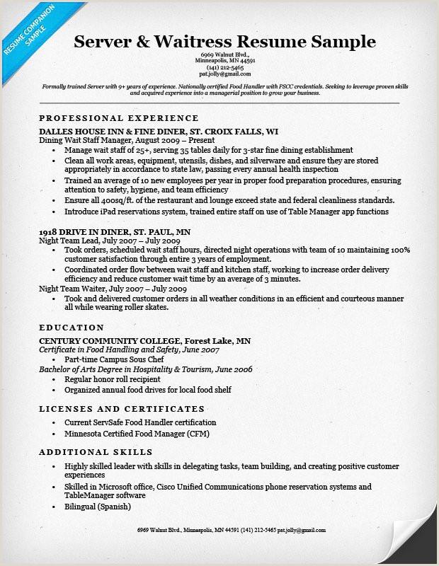 Server Job Resume New Job No Experience Sample Paralegal