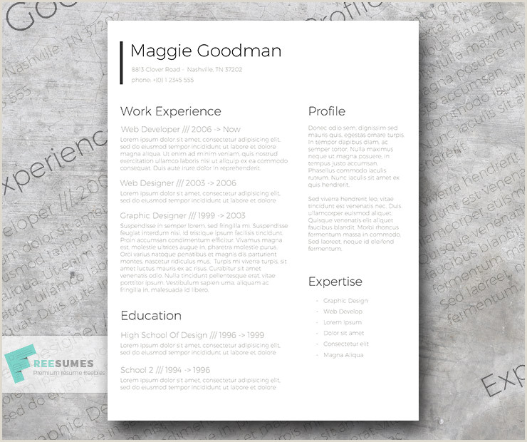Free Classic and Sleek Resume Template Freesumes