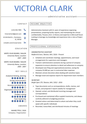 New Professional Cv format 2017 Professional Resume Templates Free Download