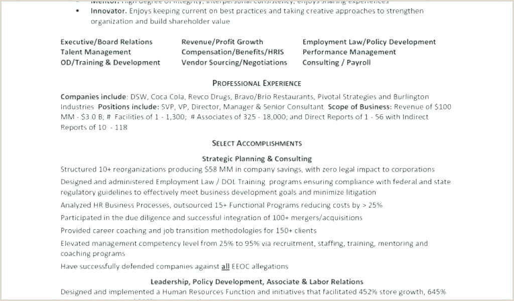 New Professional Cv format 2018 Cv Template for Job In Uk