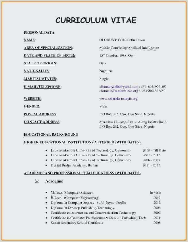 Nigerian Professional Cv format New Resume Sample Word File