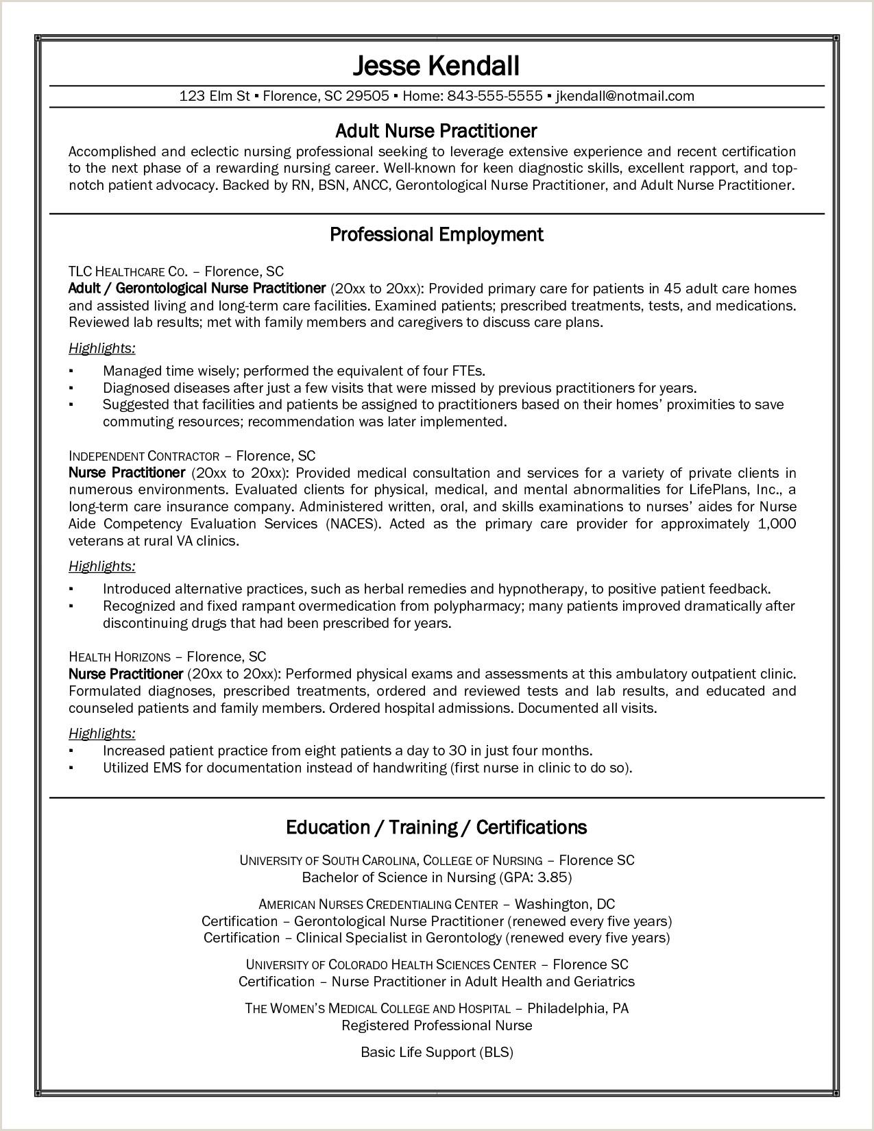 Cv Examples Nurse Practitioner CV
