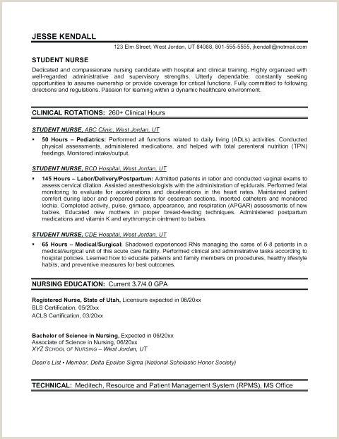 Nurse Practitioner Curriculum Vitae Examples Nurse Practitioner Documentation Template