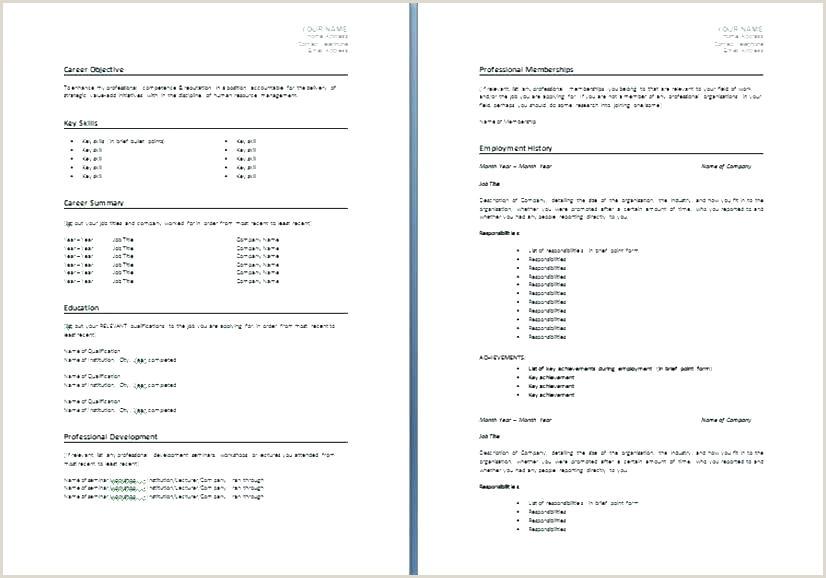 Nz Standard Cv format Seek Resume Template Job Cv Nz