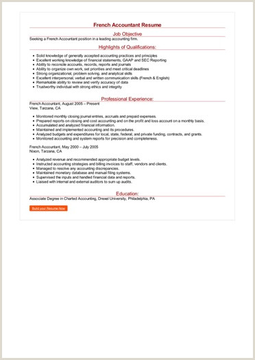 French Accountant Resume