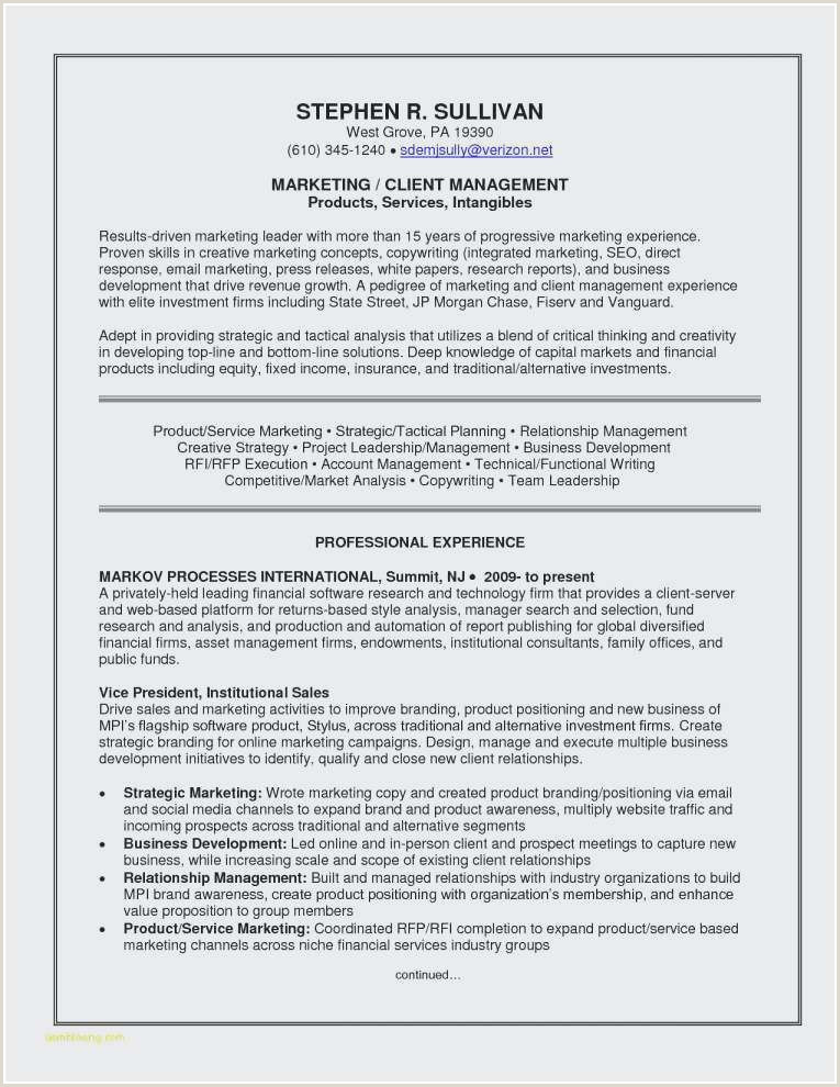 Elegant Resume Objective for Marketing