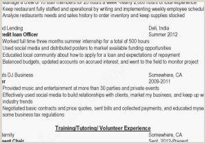 Objective for Marketing Resume Marketing Resume Sample Free Sample Resume Objectives for