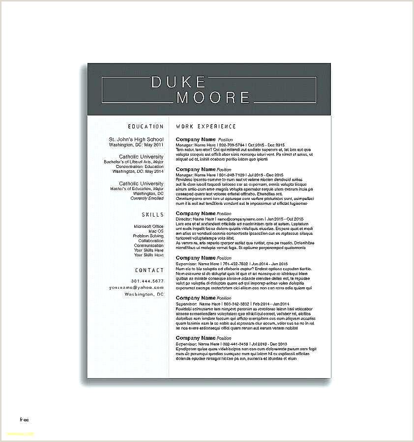 Minimalist Detailed Resume format for Freshers Resume Design