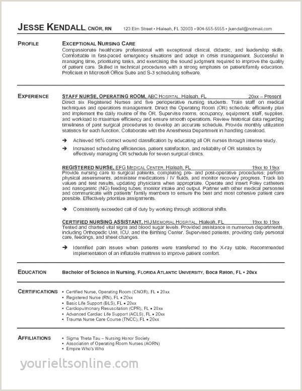 Professional Sales Resume Sample Sales Marketing Career