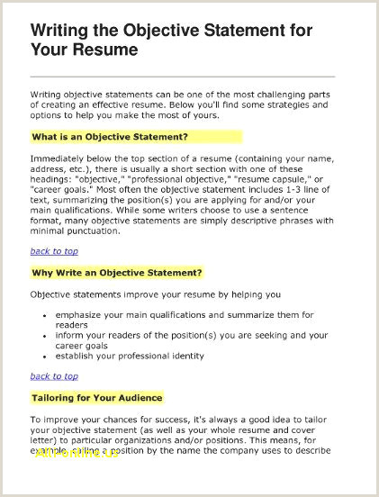Resume Opening Statement Examples Lovely Example Resume