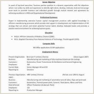 Objectives for Scholarship Resumes Scholarship Resume Template Scholarship Resume Templates