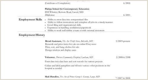 Template Cv Design De Luxe Md Resume Best Example Resume