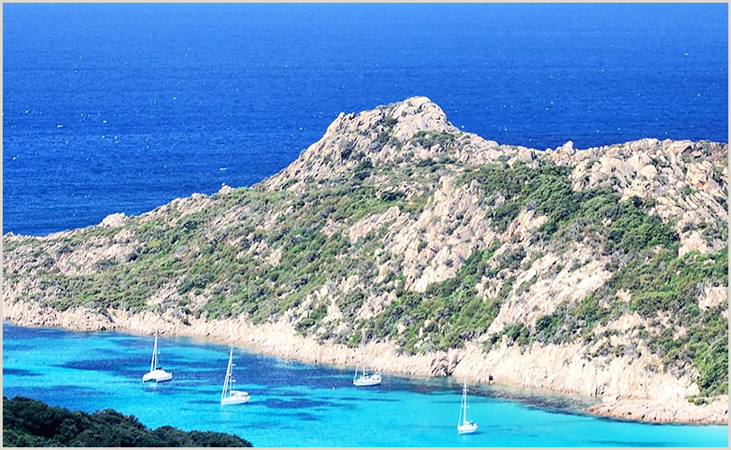 Office Secret Santa Questionnaire Partez En Corse Avec Les Collectionneurs & Air Corsica