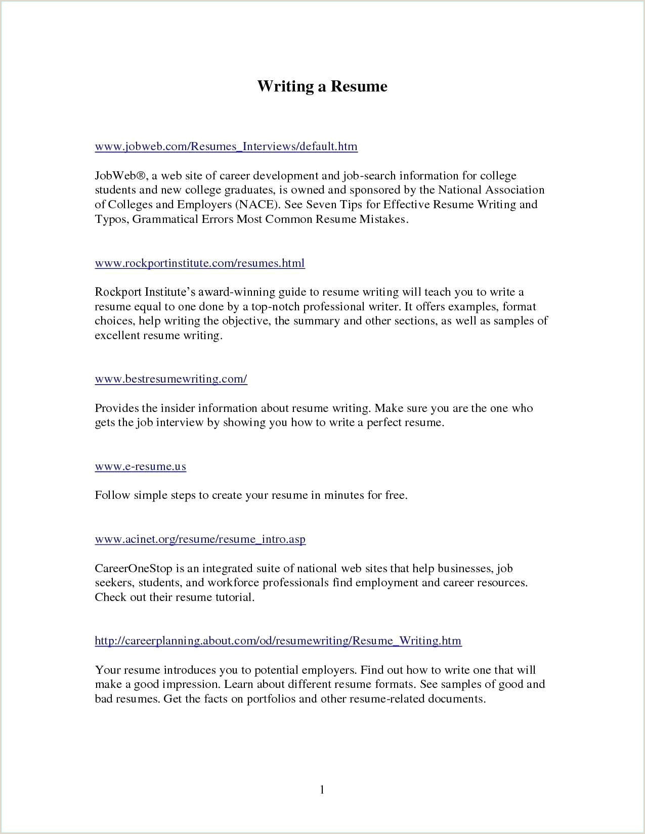 One Page Profiles Template E Page Executive Summary Example Fresh Good Resume Unique
