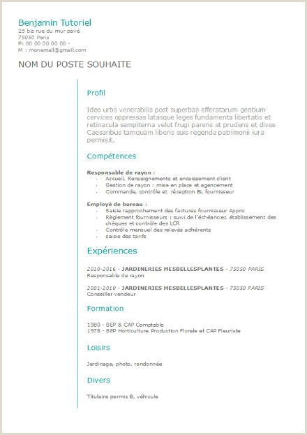 Open Office Template Resume Cv A Remplir format Open Office