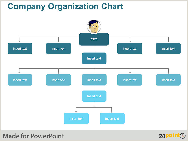 pany Organizational Structure · Collection of Charts