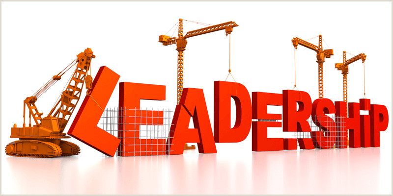 Adaptive Leadership by Ron Heifetz and Marty Linsky