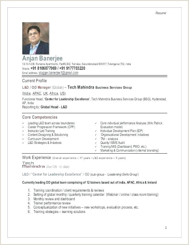 Personal Marketing Plan Template Individual Marketing Plan Template