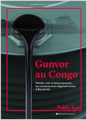 Pet Store Cover Letter Gunvor Au Congo