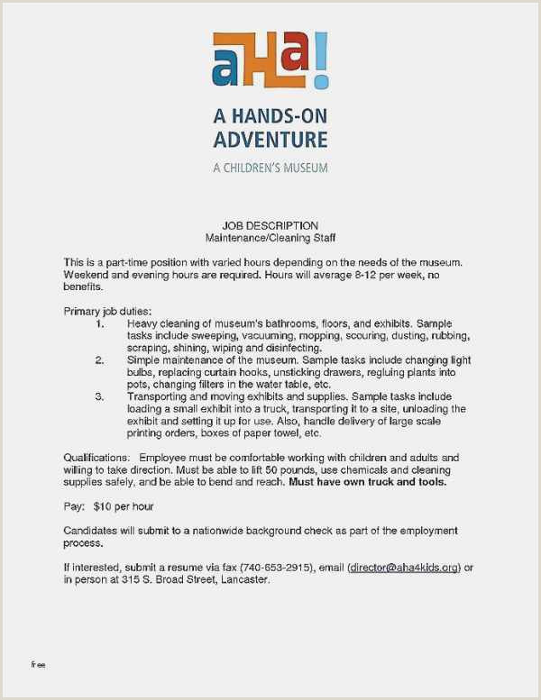 Free Resume Vita Simple