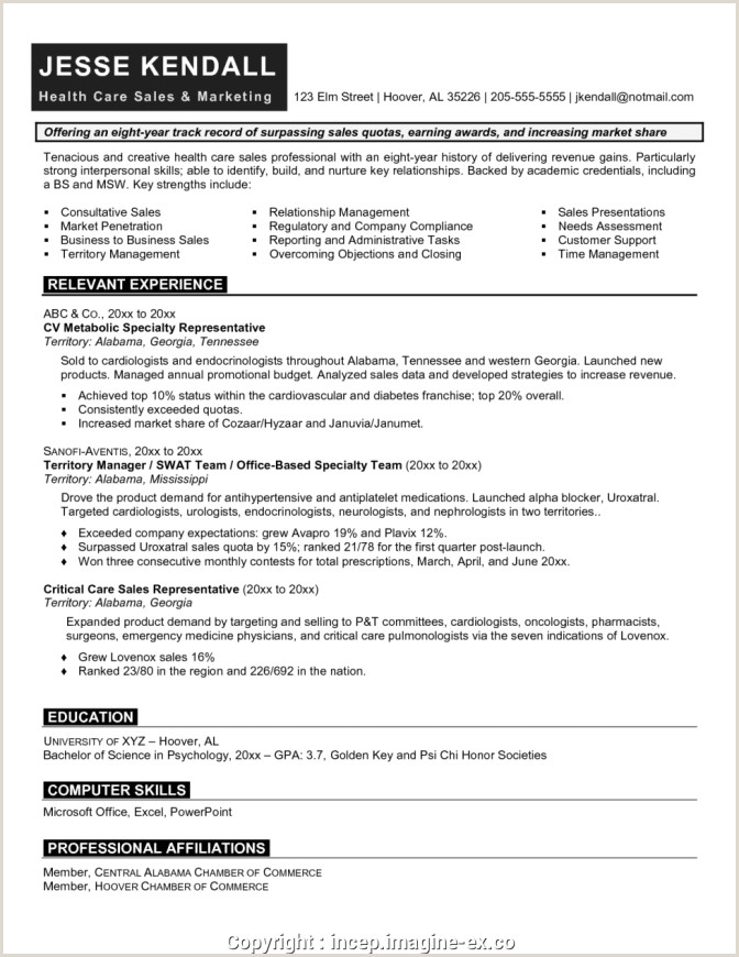 Pharmacy Fresher Resume format Download In Ms Word Professional Sales Marketing Resume format Exampl