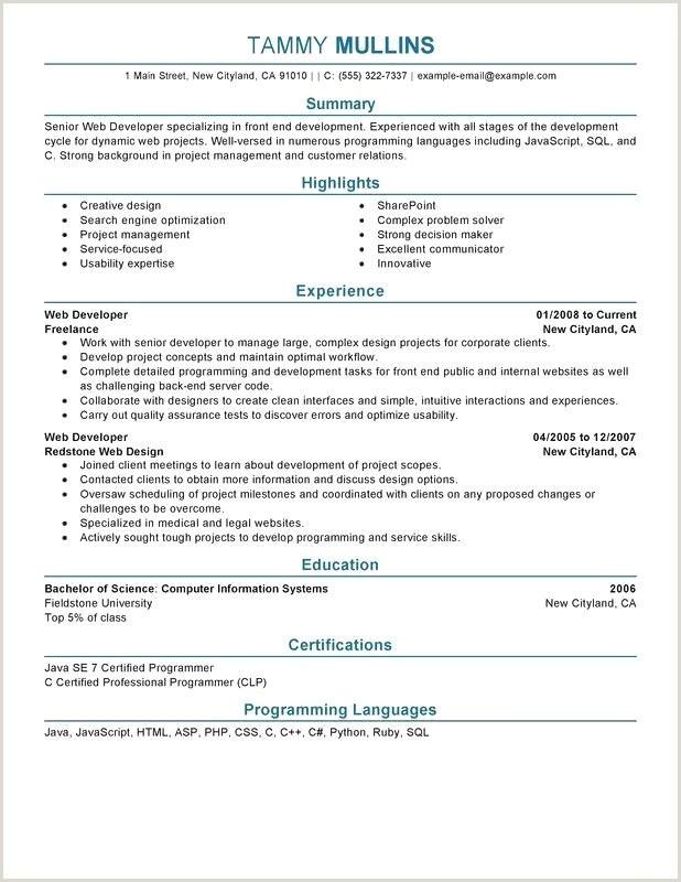 Php Developer Resume Cv Pour Babysitting Nouveau Babysitting Resume Examples