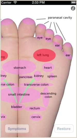 Picture Of Foot Reflexology Chart Foot Massage Map Free On the App Store