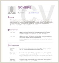 √ Modelo De Curriculum Vitae Honduras