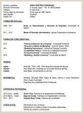 Modelo Curriculum Basico Sin Experiencia Modelo