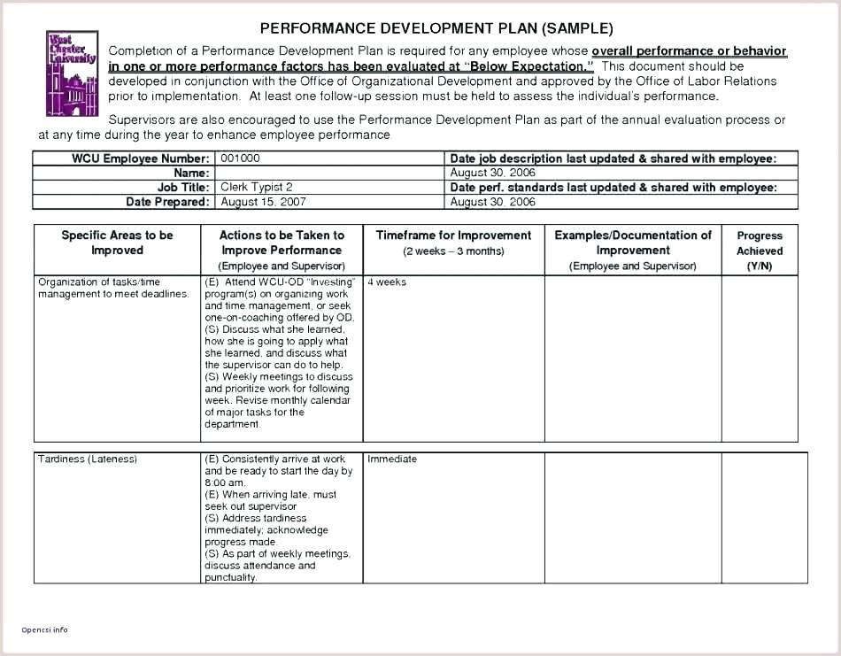 33 Plumbing Inspection Checklist form