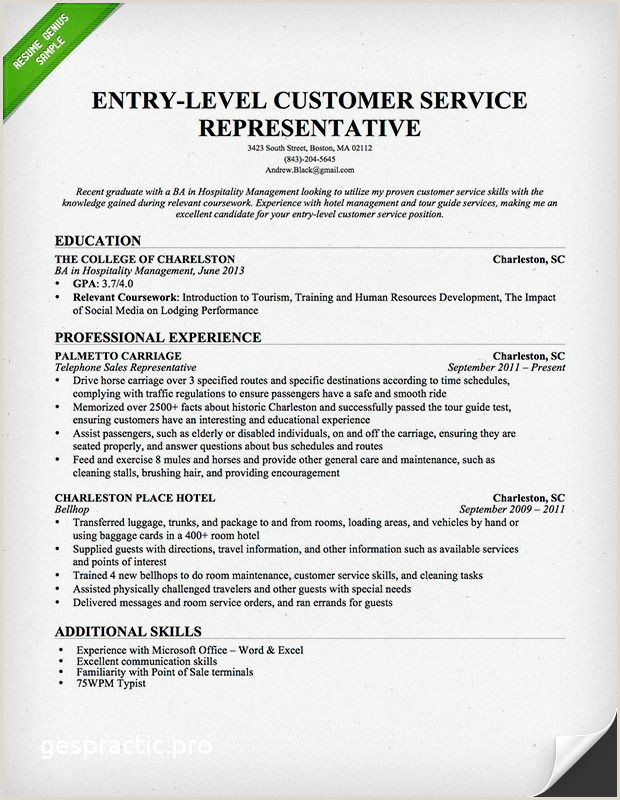 Sample Ministry Resume Sample Sample Ministry Resume